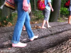Kaum jemand macht es sich bewusst, welche Auswirkungen das Tragen von Schuhen und unsere Gangart auf unseren Gesundheitszustand haben. Leider beweisen die Krankheitsstatistiken, dass dies so ist. Erfahren Sie hautnah, wie Sie den vielfältigen Nutzen des Barfußlaufens für Ihre Gesundheit nutzen können. Lernen Sie, wie wichtig es ist Ihre Füße so zu benutzen, wie es die Natur vorgesehen hat und wie Sie Problemen und Krankheiten entgegenwirken können. Gesundheitszustand haben. Leider beweisen die Krankheitsstatistiken, dass dies so ist. Erfahren Sie hautnah, wie Sie den vielfältigen Nutzen des Barfußlaufens für Ihre Gesundheit nutzen können. Lernen Sie, wie wichtig es ist Ihre Füße so zu benutzen, wie es die Natur vorgesehen hat und wie Sie Problemen und Krankheiten entgegenwirken können.